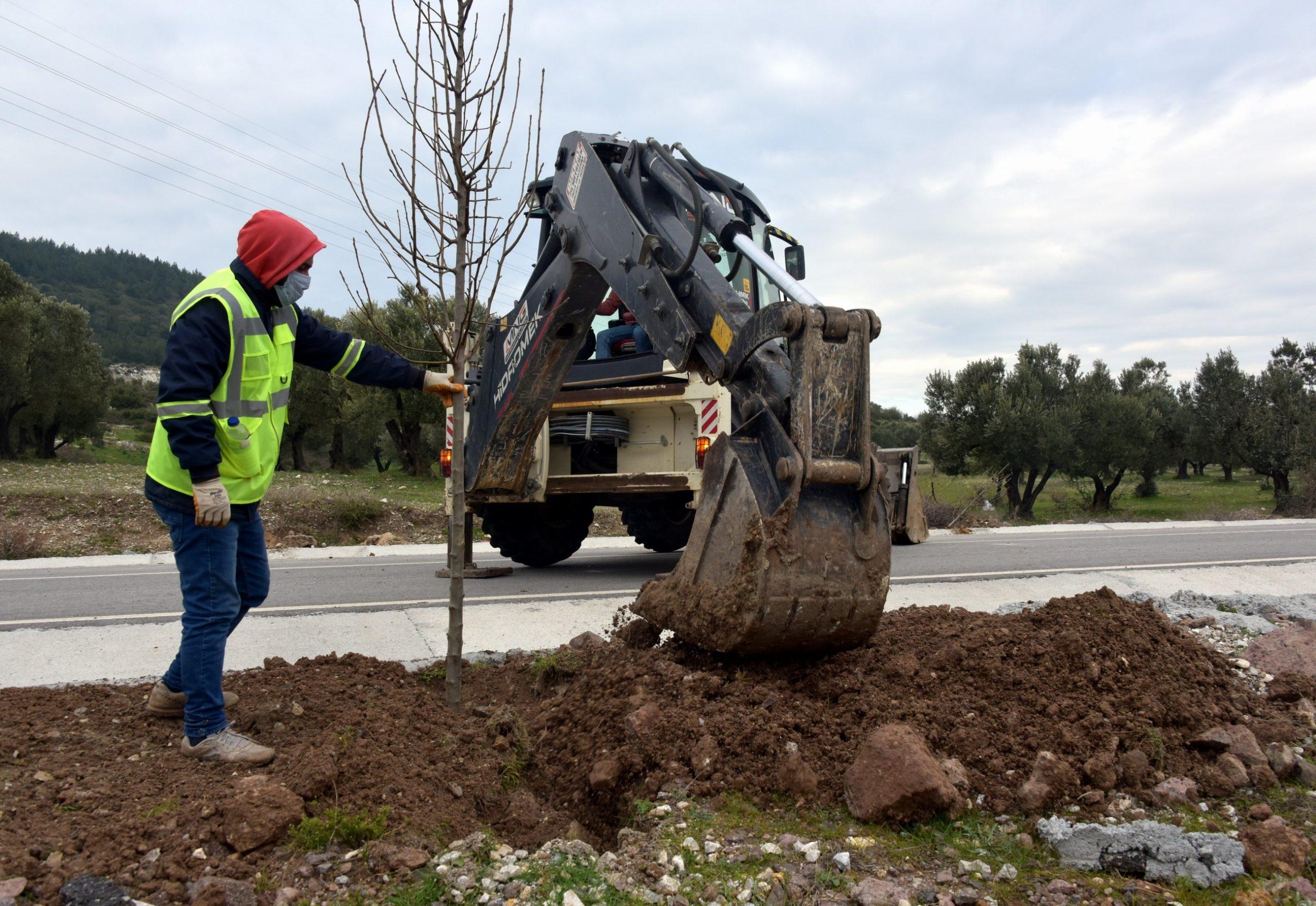 Aliağa'da Ağaçlandırma 2021'de de Hız Kesmiyor
