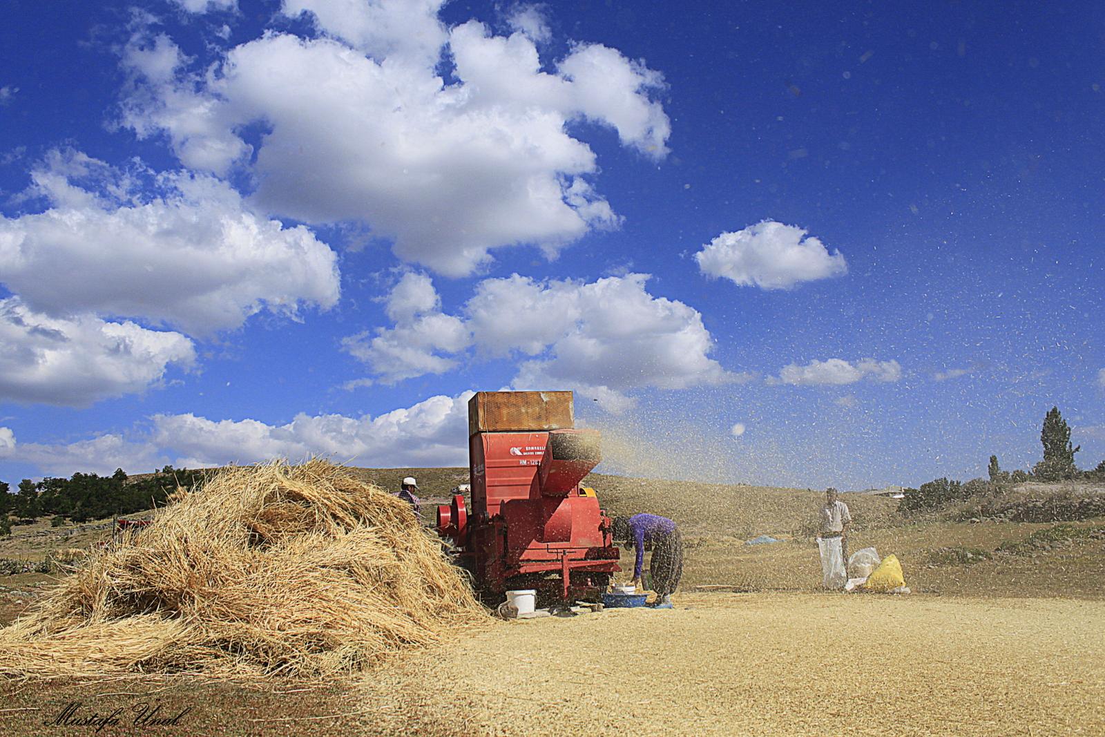 Seydişehir'de Esnaf ve Çiftçilere Destek