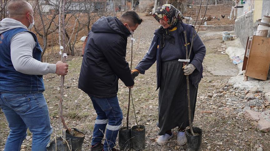 Belediyeden Keçiören'li Çiftçilere Meyve Fidanı