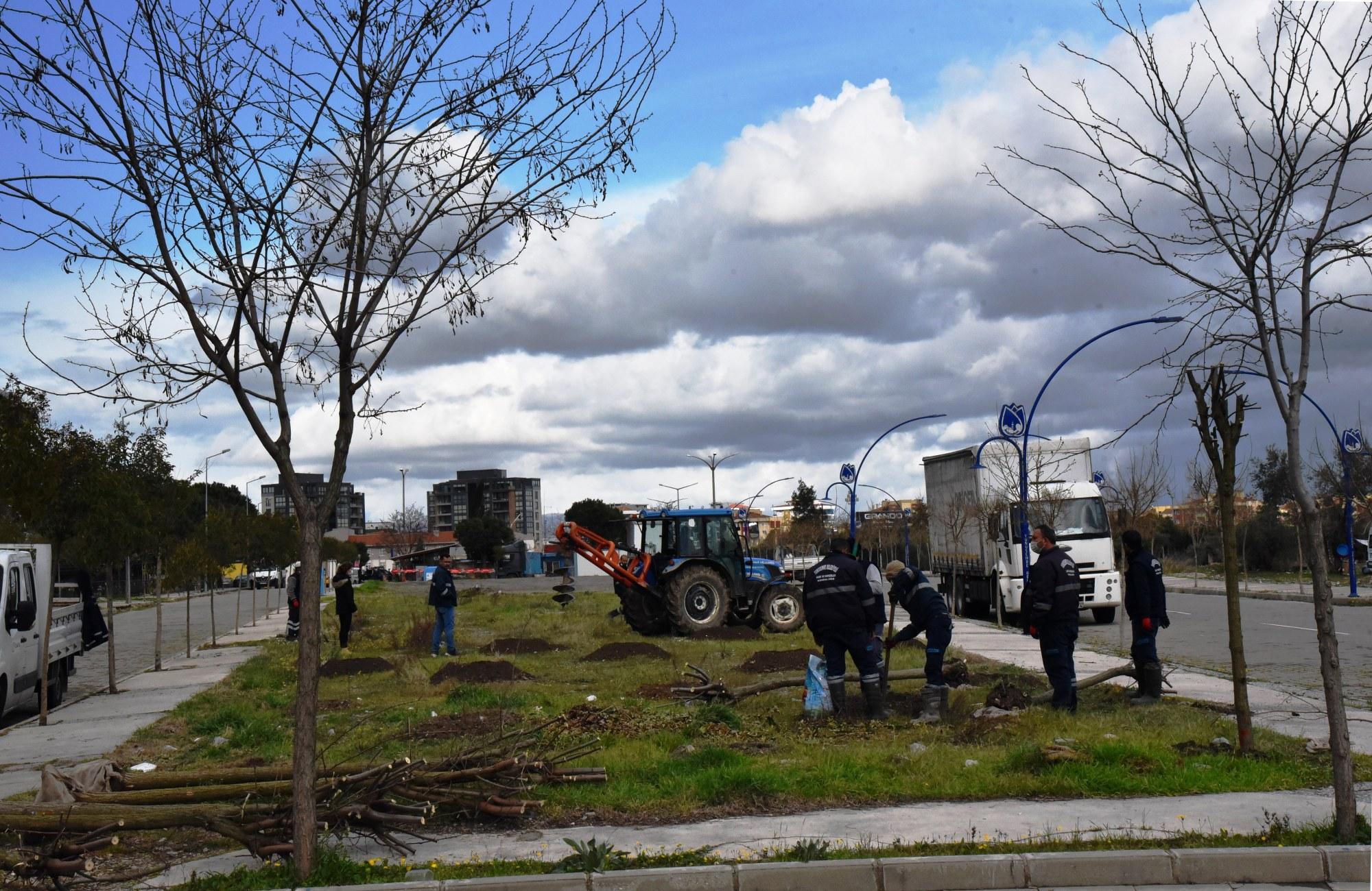 Yunusemre'de Ağaçlandırma Çalışmaları Devam Ediyor