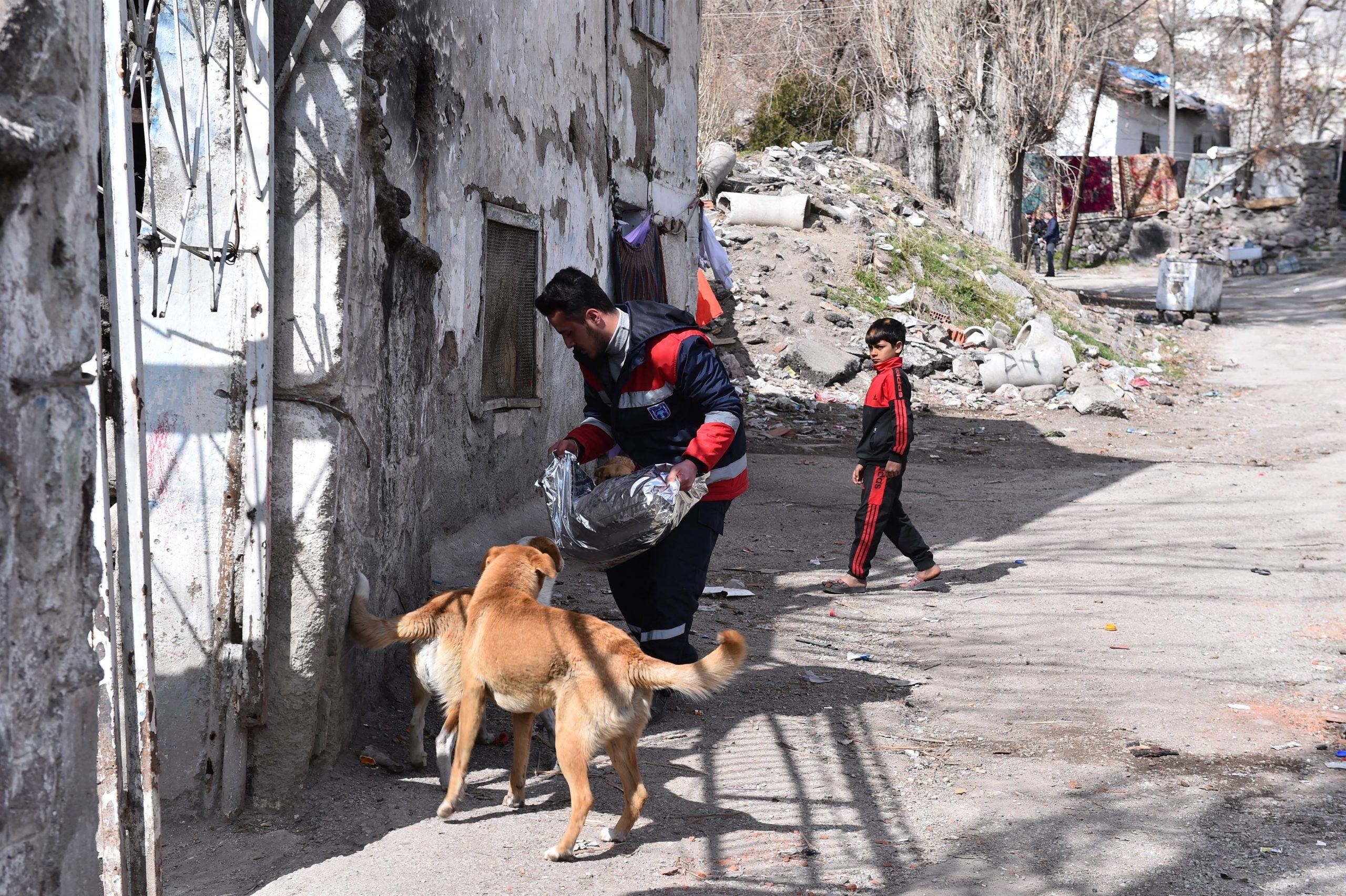 Ankara Büyükşehir Hayvanlara Mama Desteğini Sürdürüyor