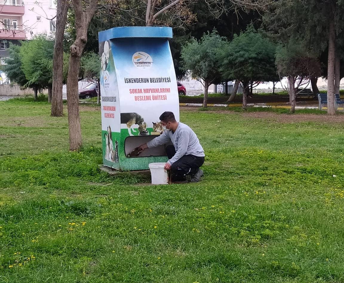 İskenderun'da Sokak Hayvanları Unutulmadı