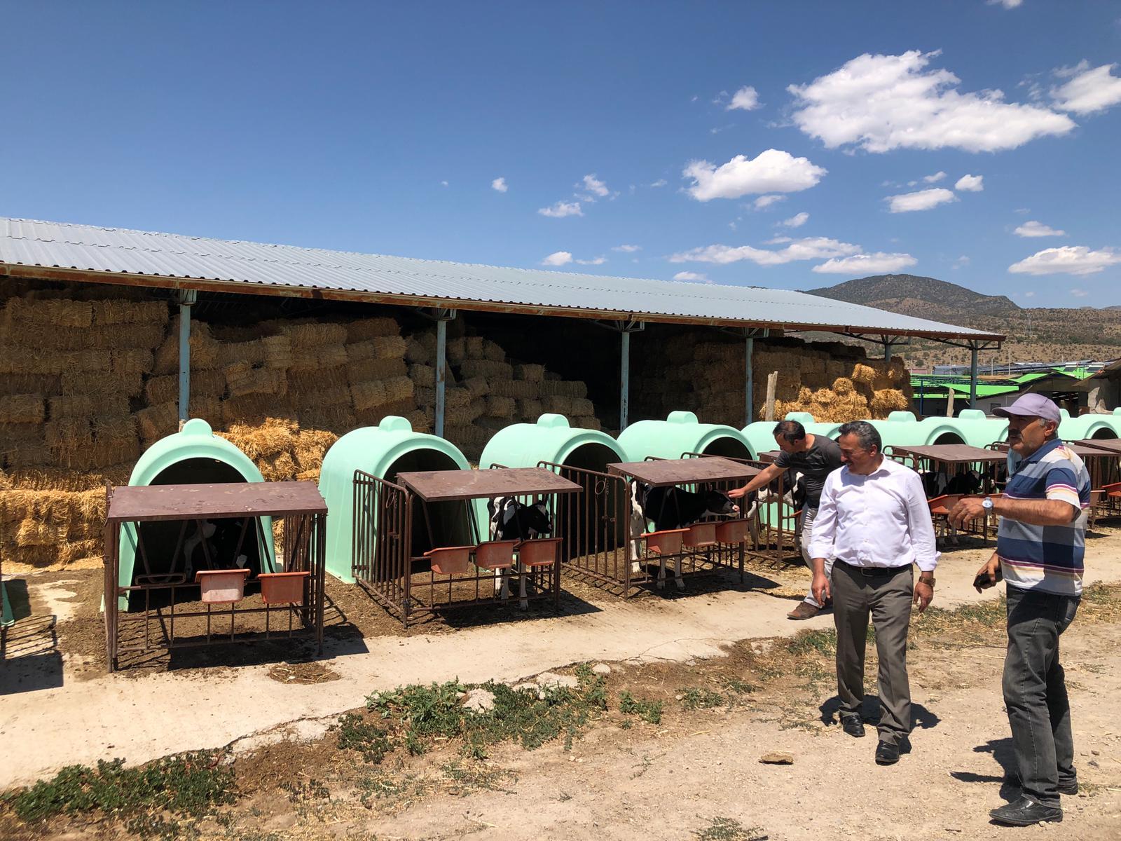 Seydişehir Belediyesi, Hayvancılık Sektörünü Geliştirmek İçin Çalışmalar Yapıyor