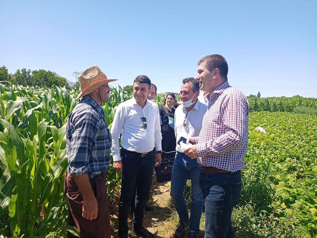 Burdur Belediye Başkanı Ercengiz'den Fasulye ve Domates Üreticilerine Ziyaret