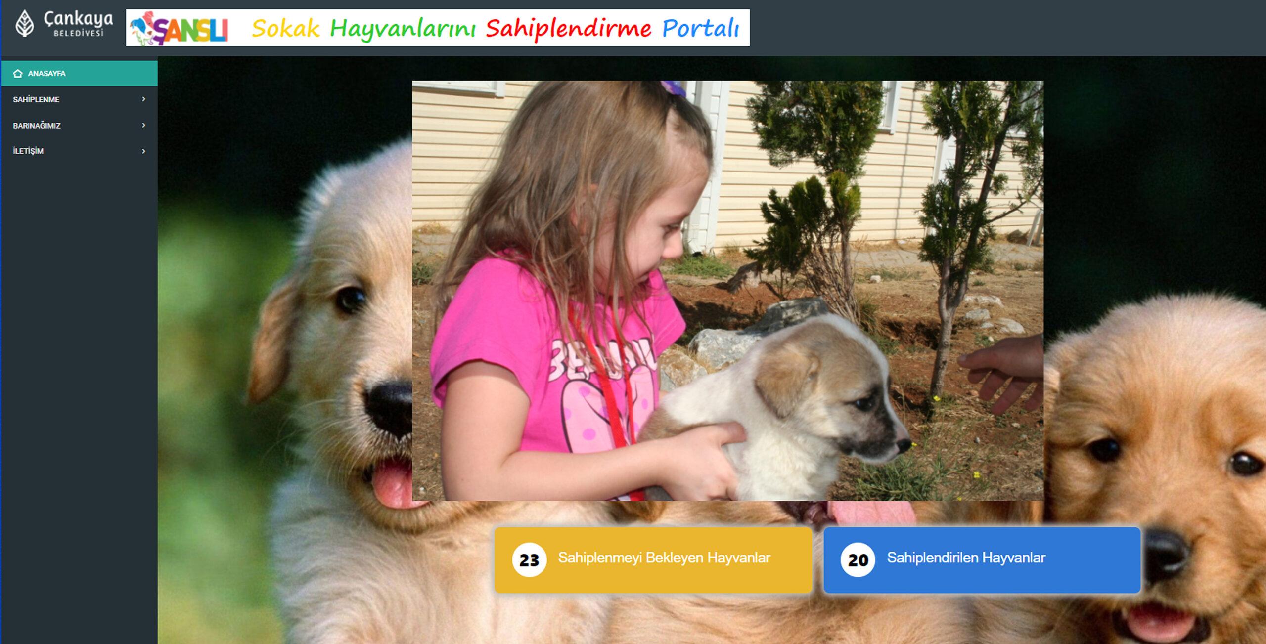 Çankaya Belediyesi, Sokak Hayvanlarını Sahiplendirmek İçin Portal Oluşturdu